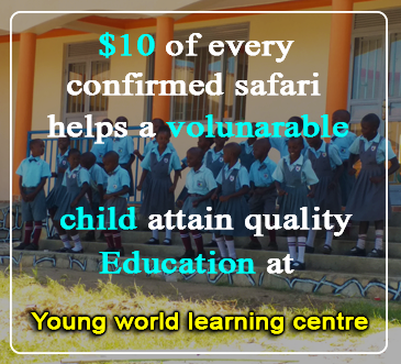 Young world learning centre