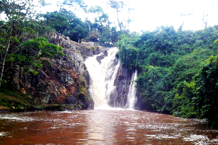 1 day Jinja Tour adventure with a visit to the Source of River Nile, Sezibwa falls and Mabira forest